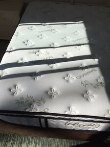 Queen mattress and base urgent sale only $150 Strathfield Strathfield Area Preview