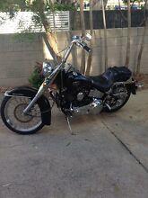 Harley Davidson FLST Maroochydore Maroochydore Area Preview
