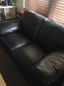 Black Bohemia 2 seater bonded leather Flinders Park Charles Sturt Area Preview
