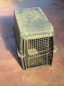 Pet Carrier Inglewood Stirling Area Preview