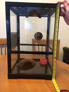 Small Reptile Enclosure For Sale Redbank Plains Ipswich City Preview