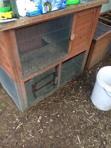 Rabbit hutch Wentworth Falls Blue Mountains Preview