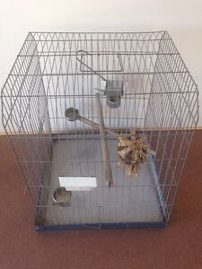 Large bird cage - heavy duty (parrot, cockatiel, corella, galah) Wakerley Brisbane South East Preview
