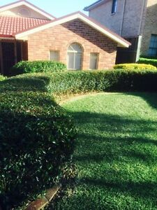 Cheap lawn mowing &Gardening&landscaping(gutter cleaning) Blacktown Blacktown Area Preview
