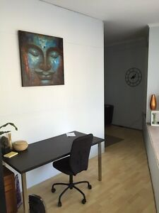 Clinic for rent up too 3 days a week. Balgowlah Manly Area Preview