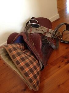 Stock saddle Jilliby Wyong Area Preview