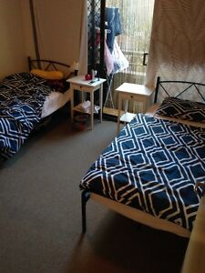 ROOM SHARE (GIRL ONLY) $20 PER NIGHT OR $100 A WEEK Surfers Paradise Gold Coast City Preview