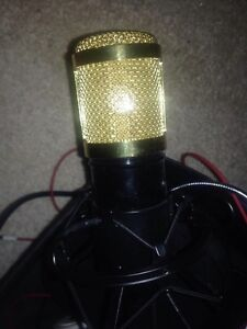 Microphone Hallett Cove Marion Area Preview