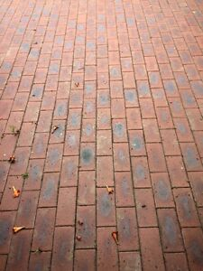 Recycled clay pavers bricks red with blue spots 100 Vic Dromana Mornington Peninsula Preview