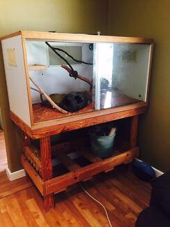 Snake  aquarium