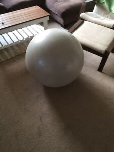 Exercise ball Rose Bay Eastern Suburbs Preview