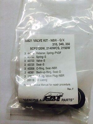 Pressure Washer Cat 310 340 350 Pumps Valves Kit Set  30821