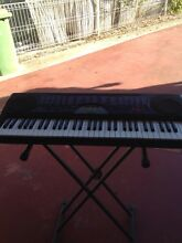 Casio organ Yamanto Ipswich City Preview