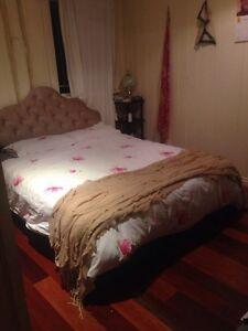 Gorgeous Paddington home needs new housemate Paddington Brisbane North West Preview