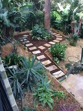 Impressive landscaping and gardening Lane Cove Lane Cove Area Preview