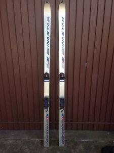 Dynastar Skis pair Oatley Hurstville Area Preview