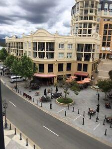 Beautiful Apartment for rent! Carrara Gold Coast City Preview
