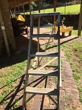 Aluminium ladder Rosemount Maroochydore Area Preview