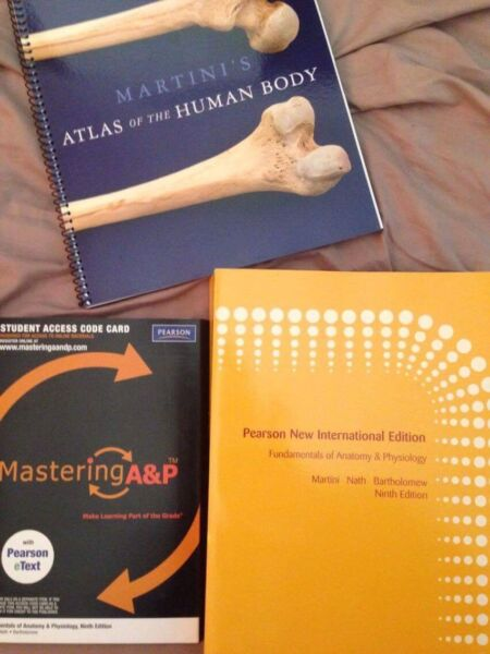 Niedlich Anatomy And Physiology Textbook Pearson Fotos - Anatomie ...