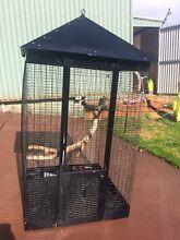 Bird Cage Walliston Kalamunda Area Preview