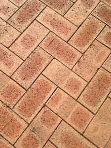 Brick pavers Dianella Stirling Area Preview