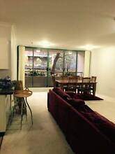 Fun-filled apartment seeking the right third person North Sydney North Sydney Area Preview