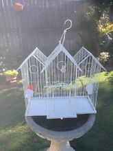 Bird Cage White Ornate Robina Gold Coast South Preview