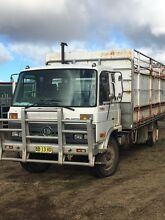 For Sale Nissan Tray truck a Dangarsleigh Armidale City Preview