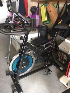 Bike Morpeth Maitland Area Preview
