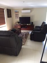 Brand new 100% genuine leather lounge suite sofa couch black & brown Sippy Downs Maroochydore Area Preview