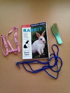 Rabbit care book, brush, lead and harness Mundaring Mundaring Area Preview