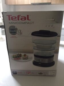 Tefal mini steamer Chatswood West Willoughby Area Preview