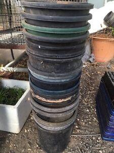 Plastic pots Oakville Hawkesbury Area Preview