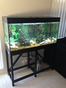 Fishtank Wanneroo Wanneroo Area Preview