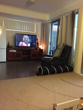 Large Modern Townhouse Seeks New Housemate Wakerley Brisbane South East Preview
