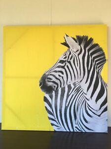 Zebra picture Wulagi Darwin City Preview