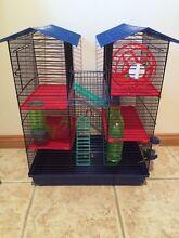 Mouse/Rats Cage Latrobe Latrobe Area Preview