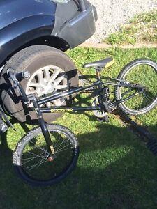 Rockstar Energy Free Agent BMX bike X Games Cameron Park Lake Macquarie Area Preview