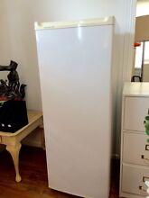 Large kelvinator2 upright freezer-300L Sandy Bay Hobart City Preview