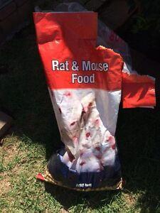 Rat/mouse cubes Blacktown Blacktown Area Preview