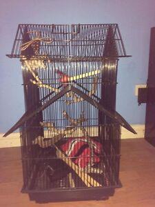 Near new bird cage Bundall Gold Coast City Preview