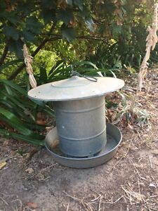 Chicken Feeder (Large) Montacute Adelaide Hills Preview