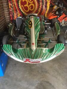 TONY KART 2014 ROTAX FOR SALE WITH SPARE WETS TROLLY AND RACE GEAR Melbourne CBD Melbourne City Preview