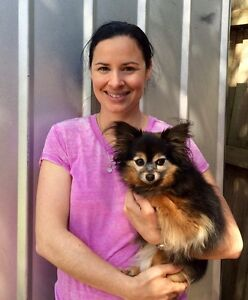 In-home dog grooming Hampton East Bayside Area Preview