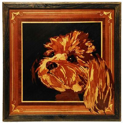 Adorno de perro Shih Tzu perro estudios realizados por Leonardo