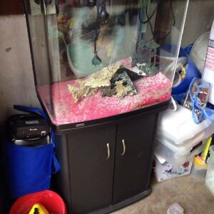 Fish tank and stand with extras Richmond Hawkesbury Area Preview