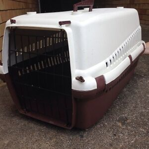 Pet Carrier Bulimba Brisbane South East Preview