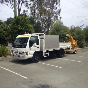 Community tree services -  Christmas special  palm removals from $100 Loganholme Logan Area Preview