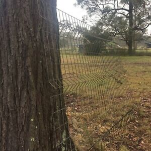 Dog proof fence over 40 panels avalailable $35 a panel Londonderry Penrith Area Preview