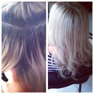 Affordable Mobile Hairdresser -$80 Full Foils (All Lengths incl Toner) Clear Island Waters Gold Coast City Preview